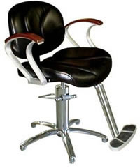 Salon Styling Chair: 01-5500S