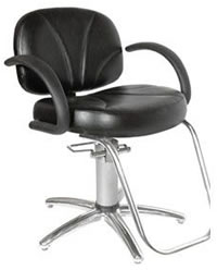 Salon Styling Chair: 01-6500S